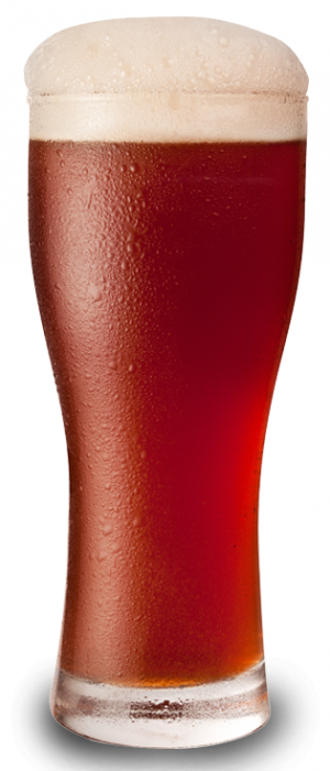 Fresh-Hopped Red Ale