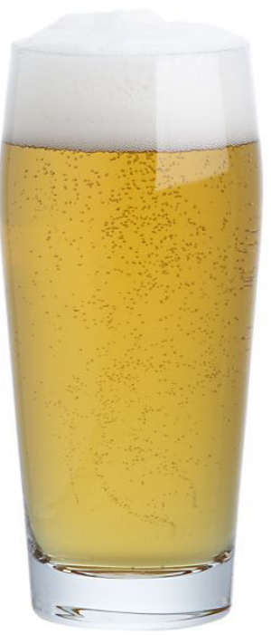 Gold Top Beer by Reisch Charities in Illinois, United States
