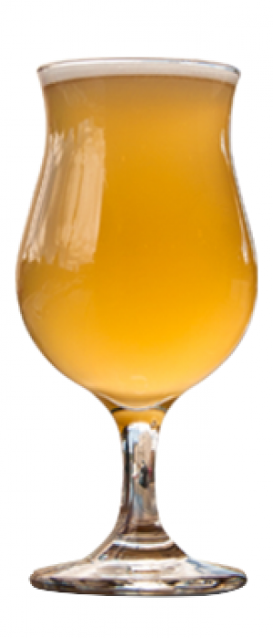 Doc's Hefe by Gravely Brewing Co. in Kentucky, United States