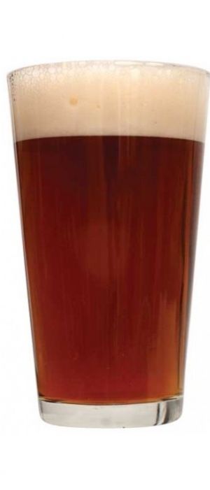 Middle Eastern Brown Ale by Green Bench Brewing Company in Florida, United States
