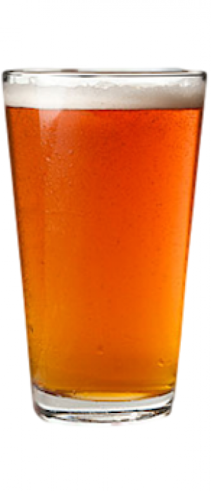 Texas Honey Ale by Guadalupe Brewing Company in Texas, United States