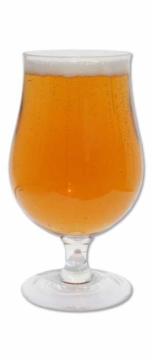 Wyld Apricot by Hearthstone Brewery in British Columbia, Canada