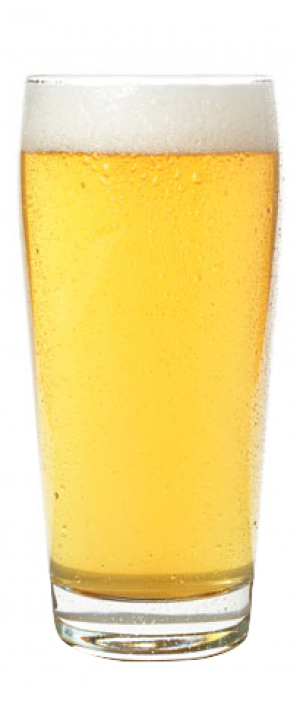 Prospector Pilsner by The Heid Out & Fisher Peak Brewing Company in British Columbia, Canada