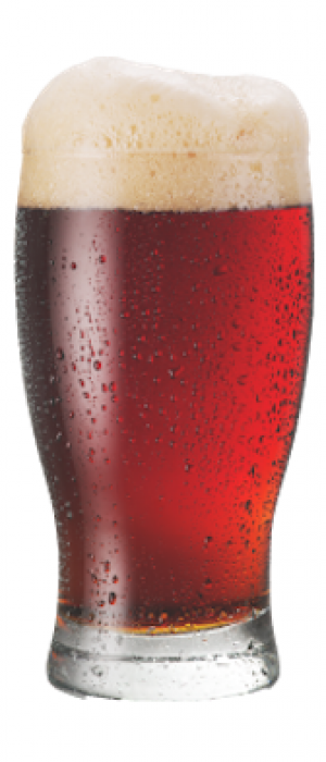 Funky Red Patina Red Ale