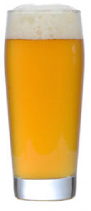 Chinook Wind Session Ale