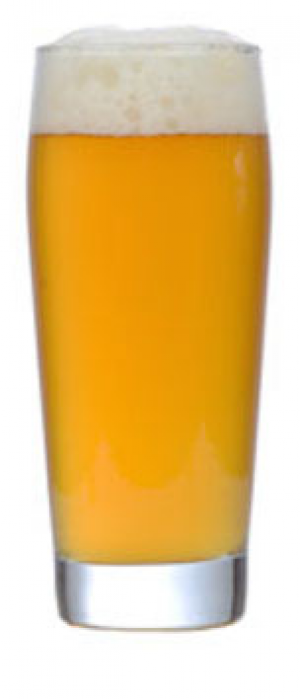 Saison by High Cotton Brewing Company in Tennessee, United States