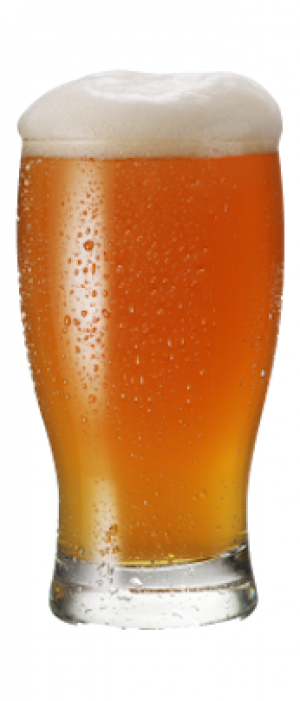 Double IPA by Hillman Beer in North Carolina, United States