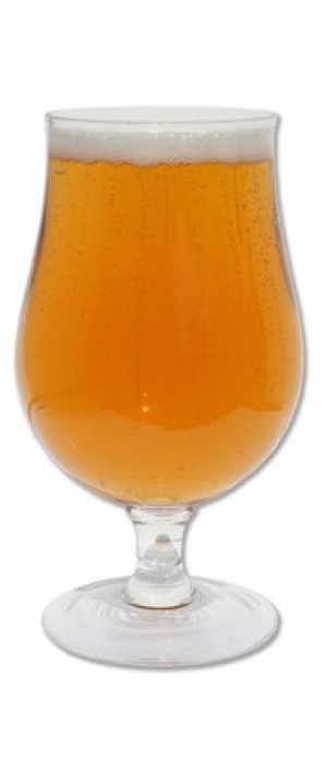 Saison by Hillman Beer in North Carolina, United States