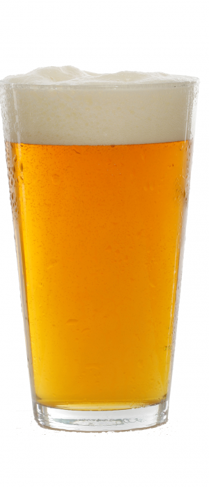 This is the Pilsener by Hoppers Grill & Brewing Co. in Utah, United States