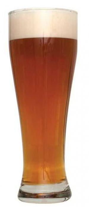 Bavarian Weizenbock by The Intrepid Sojourner Beer Project in Colorado, United States