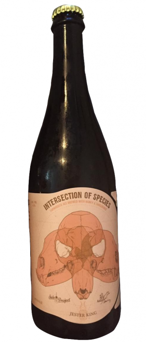 Intersection of Species by Jester King Brewery in Texas, United States