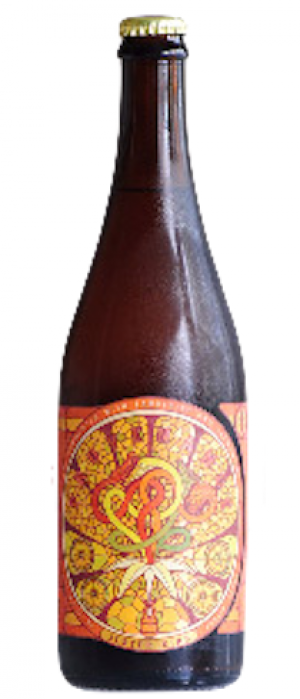 Provenance with Tangerine and Clementine by Jester King Brewery in Texas, United States
