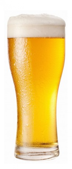 Laketown Lager by Red Arrow Brewing Company in British Columbia, Canada