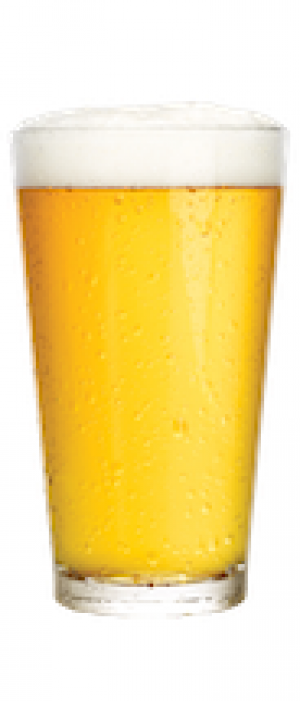 Las Olas Lager by LauderAle Brewery in Florida, United States