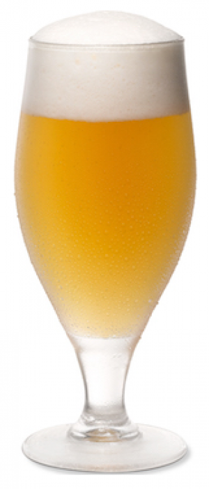Mr. White's Wit by LauderAle Brewery in Florida, United States
