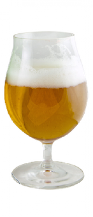 Pieces of 8 by LauderAle Brewery in Florida, United States