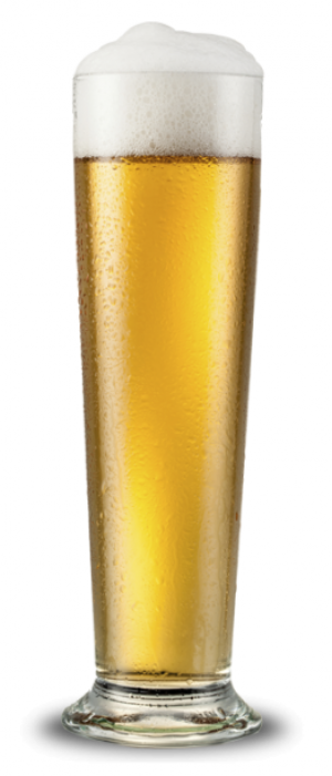 Le Beer by Gulf Stream Brewing Company in Florida, United States