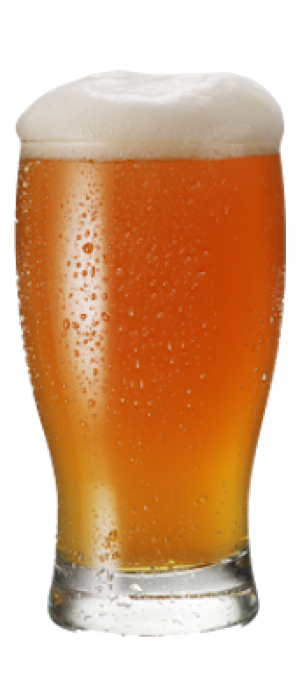 Oncorhynchus T. IPA by Locavore Beer Works in Colorado, United States