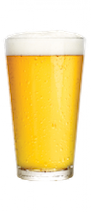 Gold Ratio by Lock City Brewing in Connecticut, United States