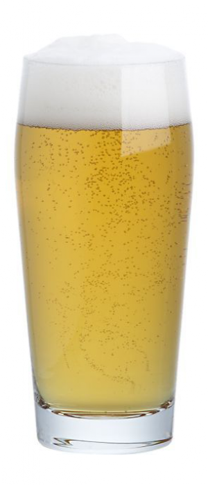Loro Blanco Light Mexican Lager by Mt. Tabor Brewing in Washington, United States