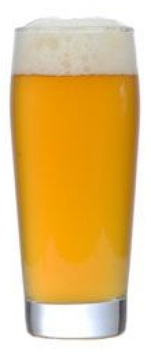 Twin City lager