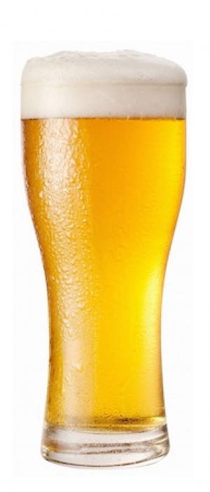 Morehouse Lager by S.Y.C. Brewing Co. in Alberta, Canada