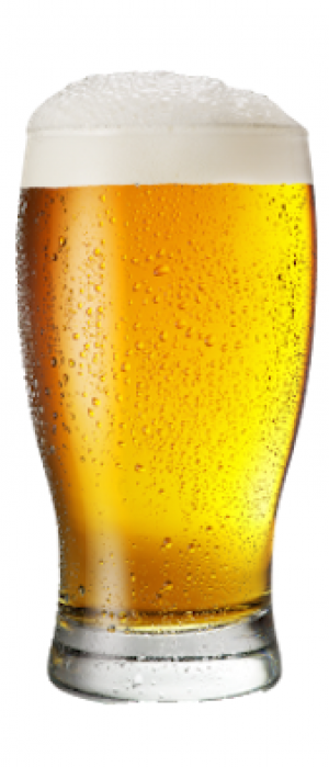Louie Lake Lager by Mother Earth Brew Co. in California, United States