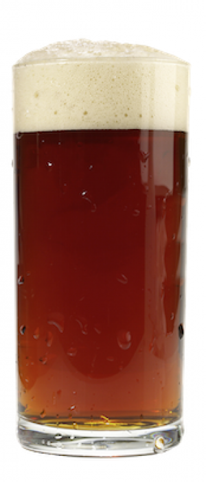 MSB by McFleshman's Brewing Co. in Wisconsin, United States