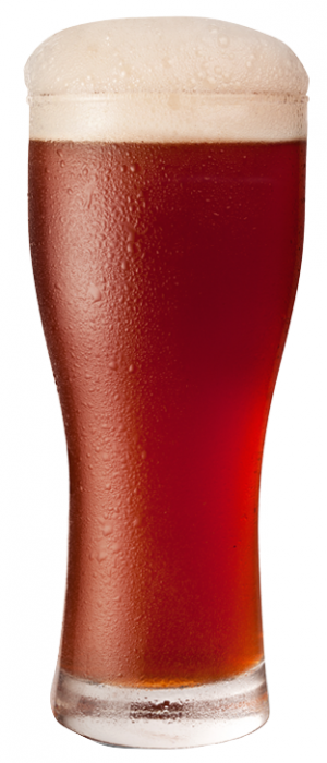 Unearthed Amber Ale by Muddy York Brewing Co. in Ontario, Canada