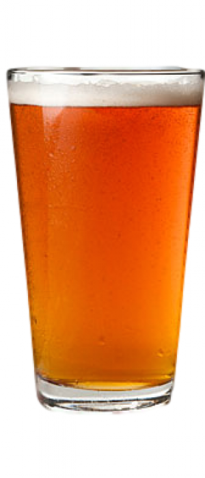 Article One Amber Lager