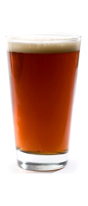 Natural Java Coffee Beer by O.T. Brewing Company in Alberta, Canada