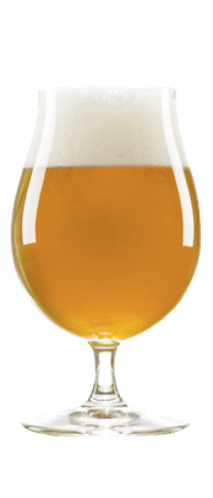 Imperial Cream Ale by Nexus Brewery in New Mexico, United States