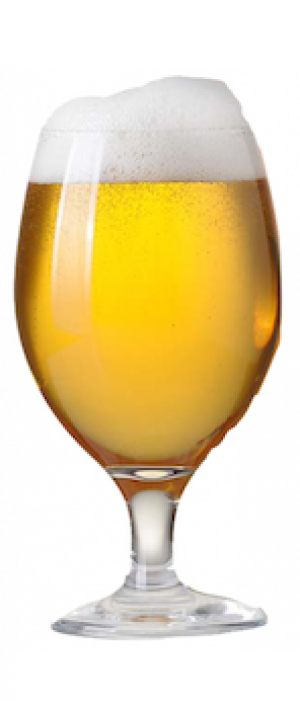 Belgian Honey Blonde by No Clue Craft Brewery in California, United States