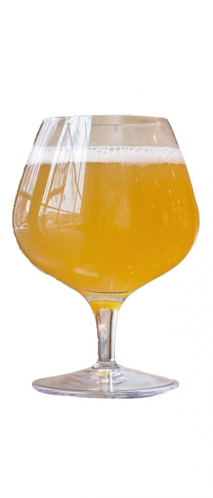 Humid Nature by Nola Brewing Company in Louisiana, United States