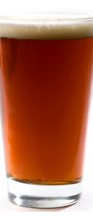 Honey Bucket Nut Brown by NWT Brewing Company / The Woodyard Brewhouse & Eatery in Northwest Territories, Canada