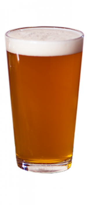 Clem's Gold by Orlison Brewing Company in Washington, United States