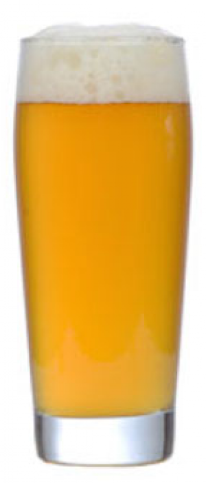 Belle Fermiere by Overshores Brewing Company in Connecticut, United States