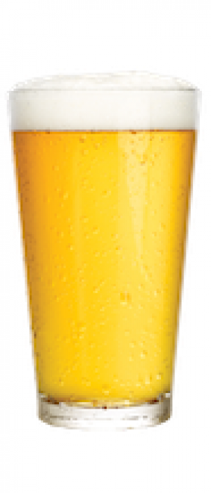 Pilsner by Paddy's Barbecue & Brewery in Alberta, Canada