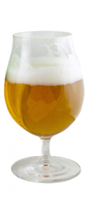 Tripel by Pedal Haus Brewery in Arizona, United States