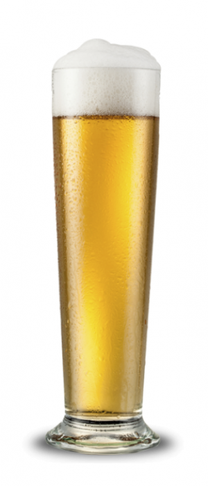Pils by Goldfinger Brewing Company in Illinois, United States