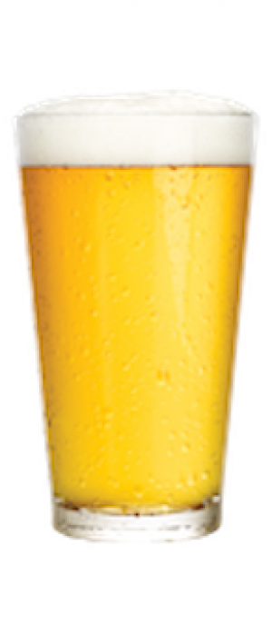 Pilsener by President's Choice in Ontario, Canada