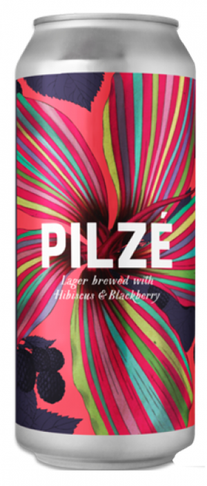 Pilzé by Goose Island Beer Co. in Illinois, United States