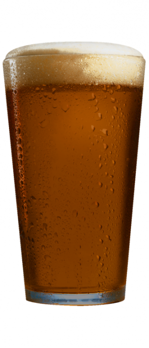 Potomac Pecan Ale by 1812 Brewery in Maryland, United States