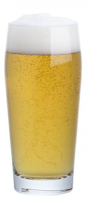 Pedro O'Flannigan's Mexican Lager by Quarter Celtic Brewpub in New Mexico, United States