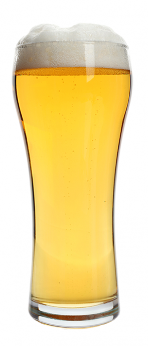 Queens Lager by Queens Brewery in New York, United States