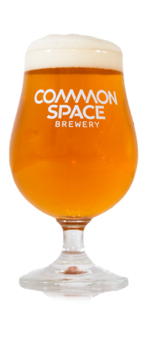 Random & Dangerous by Common Space Brewery in California, United States