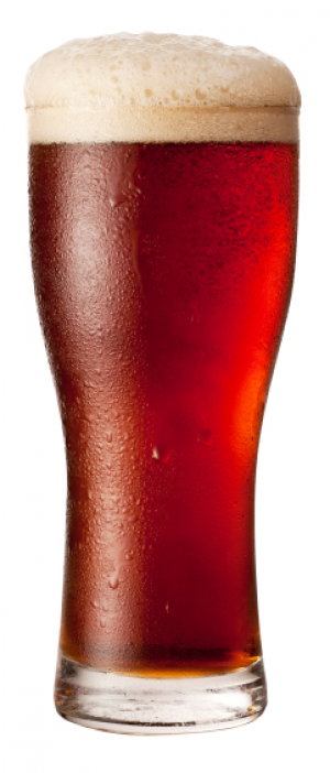 Red IPA by Bent Barley Brewing Company in Colorado, United States