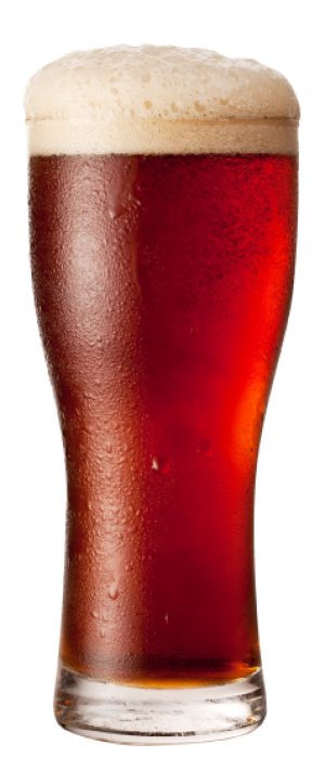 Red-Tail Irish Red Ale by Barnstormer Brewing Company in Ontario, Canada