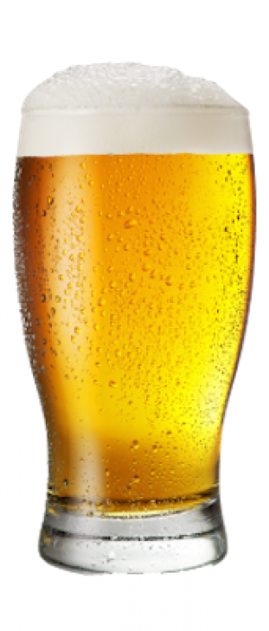 Kölsch by Redwood Curtain Brewing Company in California, United States
