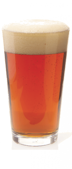Reef 11 Rye IPA by Slack Tide Brewing Company in New Jersey, United States